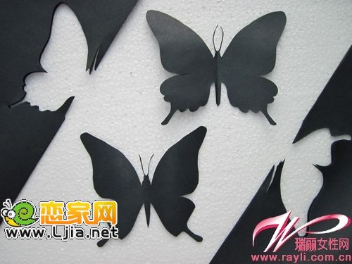 将蝴蝶翅膀向上折叠并整理