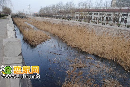 黑水污染简笔画图片