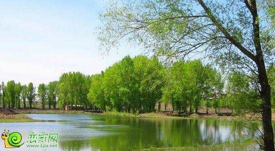 春天风景示意图