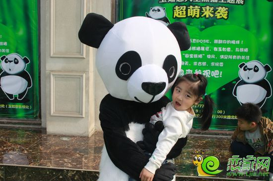一大波萌宠震撼来袭 嘉大玉如意熊猫展欢乐开启