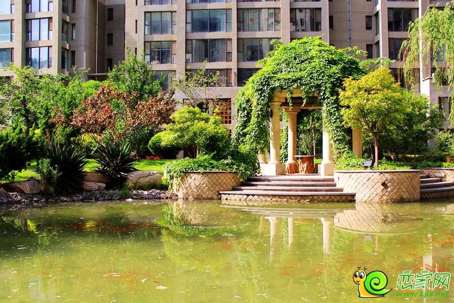 鑫域国际小区园林实景图图片